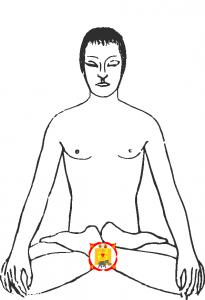 Muladhara Chakra aktivieren